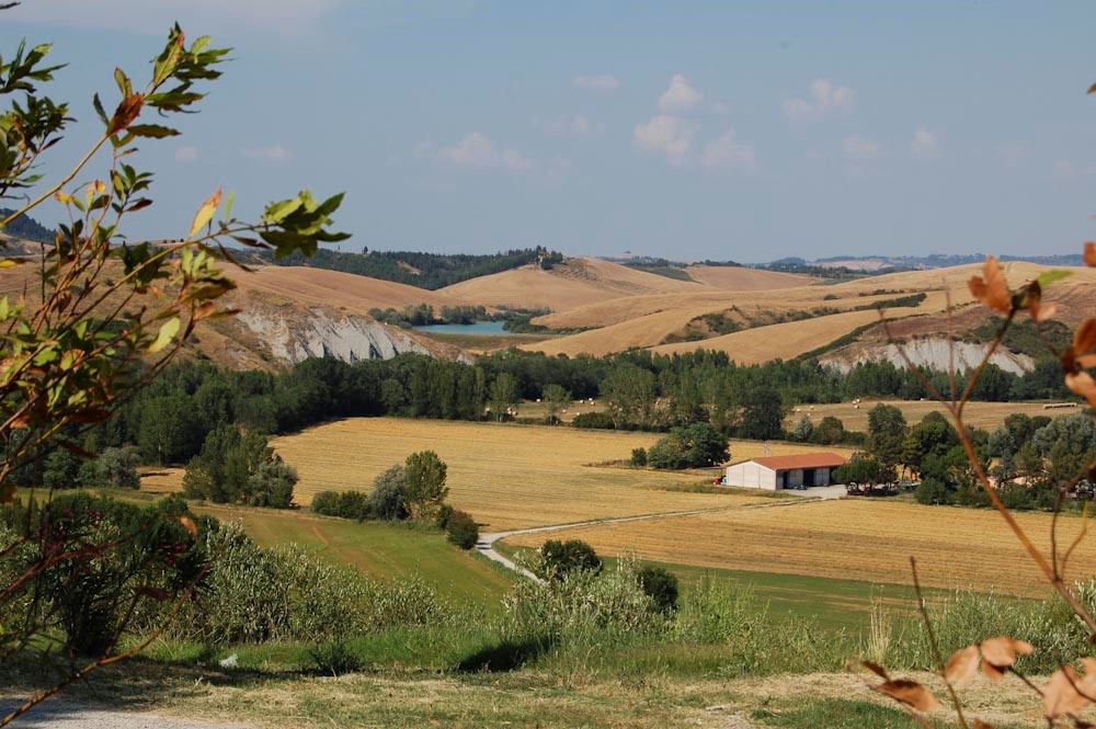 Tuscany Farmhouse for rent in Pisa (7).jpg