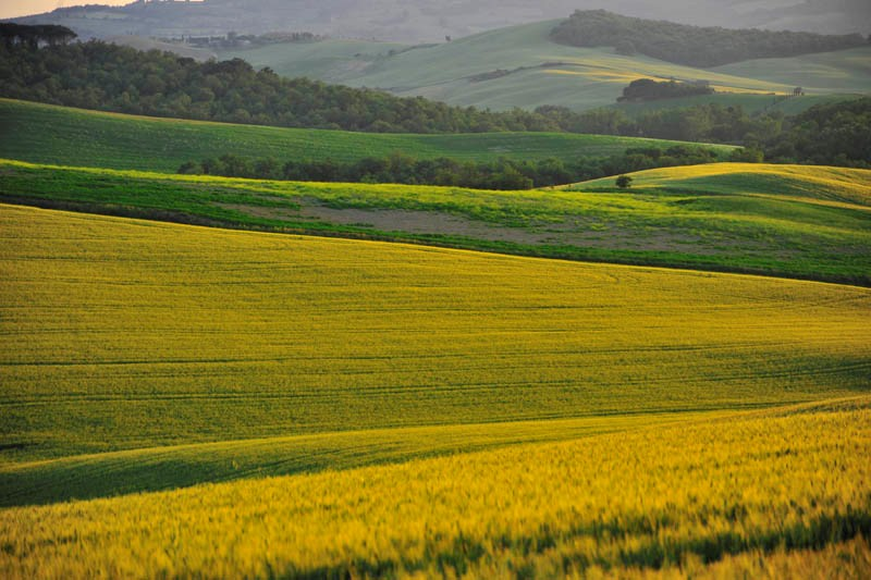 Siena beautiful landscape (7).JPG
